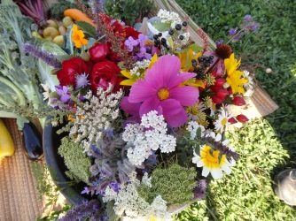 Blumenpracht im innsGART'l